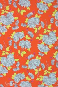 orange-chrysanthemum1